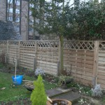Pannel fencing replacement in Cambridge
